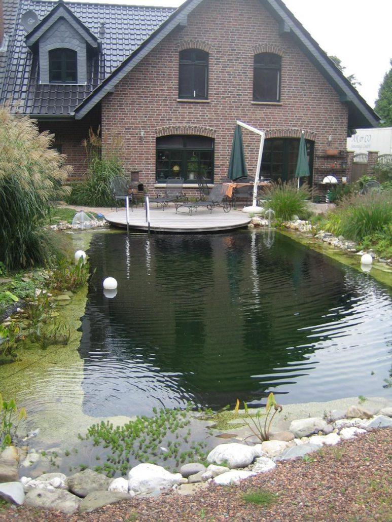 Ein Paar Wasserpflanzen Und Gleichmäßiges Plätschern Verleihen Ihrem Garten  Eine Ganz Neue Atmosphäre.